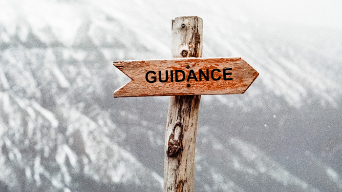 guidance-at-sapience-hr